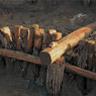 三重津海軍所は1861年に建設され、現存する日本で最も古いドックです。2009-2012年、発掘調査されました。正面部の木組は側面の柱に固定され、また全体の構造も内壁にしっかりと支えられて、完全な状態で残っていました。